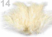 1bag Vaniglia Piume di Struzzo Lunghezza 9-16cm, E