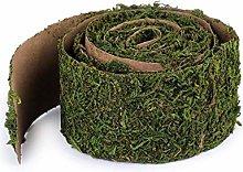 1pc Reen Decorativi Moss Larghezza 5cm, Lunghezza