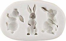3D Coniglio Pasqua Coniglio Fondente Silicone