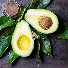 5 Pezzi Avocado Semi Alberi da frutto Varietà di