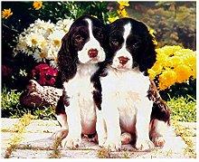 5D Fai da Te Pet Dog Pittura Diamante Rotondo