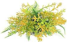 Acquario pianta paesaggistica erba acquatica, 3.5,