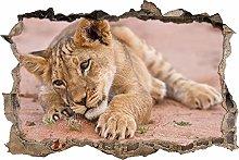 Adesivi da Parete 3D,cucciolo di leone sdraiato