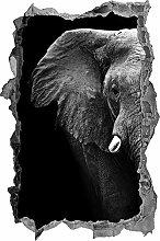 Adesivi da Parete 3D,elegante ritratto di elefante