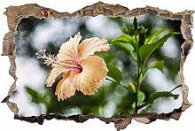 Adesivi da Parete 3D,Fiori di orchidea fiore DIY