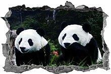 Adesivi da parete Panda, adesivo, orso panda,