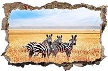 Adesivi murali - 3D - Adesivo murale adesivo Zebra
