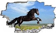 Adesivi murali - 3D - Adesivo murale cavallo