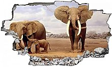 Adesivi murali - 3D - Adesivo murale elefante -