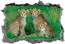 Adesivi Murali Adesivo murale Adesivo ghepardo 3D