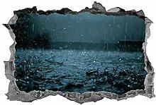 Adesivi Murali Adesivo murale Adesivo pioggia