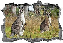 Adesivi Murali Canguro, 3d, adesivo, animali, arte