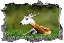 Adesivi Murali Impala, 3d, adesivo, animali, arte