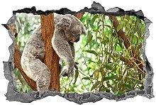 Adesivi Murali Koala, arte della parete, 3d,