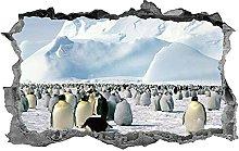 Adesivi murali Pinguini, adesivo, 3d,