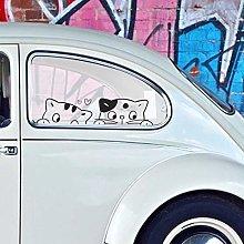 Adesivo Auto Gattino, Stickers Decalcomania