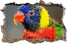 Adesivo Effetto 3D Stickers -pappagallo colorato