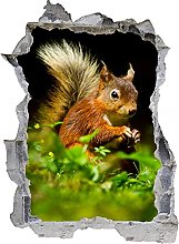 Adesivo murale 3D,scoiattolo,decorazione murale