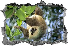 Adesivo murale bradipo animali decalcomania murale