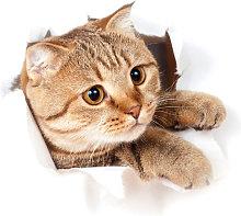 Adesivo murale impermeabile, simpatico gattino 3D,