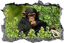Adesivo scimmia Wall Art Decal 3D simpatici