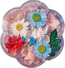 AniYY Resina epossidica, fiori secchi in resina