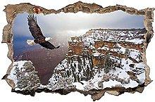 Aquila uccello natura montagna aspetto 3D adesivo