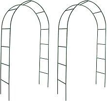 Archi da Giardino 2 pz per Piante Rampicanti -