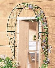 Arco romantico piante rampicanti a parete
