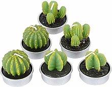 Aurora Store 12 Candela segnaposto Cactus Diametro