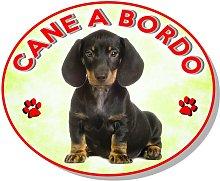 AZ - Adesivo vetrofania cane a bordo barboncino