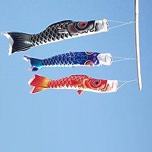 B Blesiya 70 Centimetri Giapponese Bandiera Manica