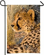 Bandiera africana del giardino del leopardo