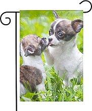 Bandiera da giardino Chihuahua Dog Kissing House