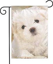 Bandiera da giardino Cucciolo Maltese Dog House