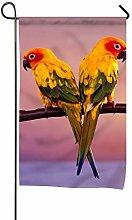 Bandiera, Design a coppia di pappagalli, Bandiera