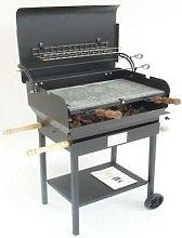 Barbecue a gas con pietra lavica modello everyday
