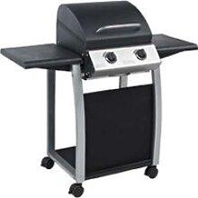 Barbecue a gas lambada 2 domus - fuochi 2 - 116x55