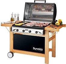 Barbecue Profy 4 inox