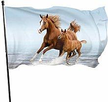 BDGHTDARED - Bandiera da giardino con cavalli che