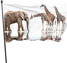 BDGHTDARED - Bandiera da giardino con elefante e