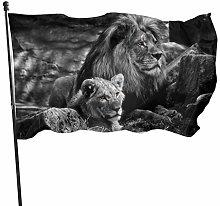 BDGHTDARED - Bandiera da giardino con leoni