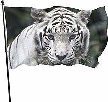 BDGHTDARED - Bandiera da giardino con occhi