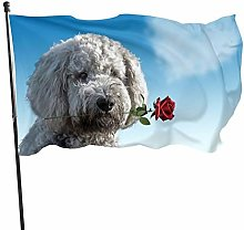 BDGHTDARED - Bandiera da giardino per animali