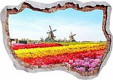 Bellissimi fiori di tulipani fracassato parete