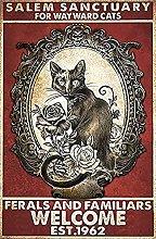 Bokueay Salem Sanctuary for Wayward Cats Halloween