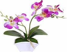 Bonsai artificiali, orchidee farfalla artificiali,