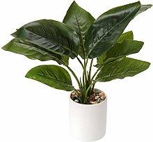 Breve piante artificiali da 31 cm per interni