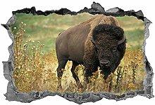 Bufalo, 3D, Arte della parete, Adesivo, Safari,