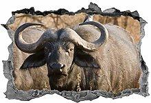Bufalo, Adesivo, 3D, Safari, Arte della parete,